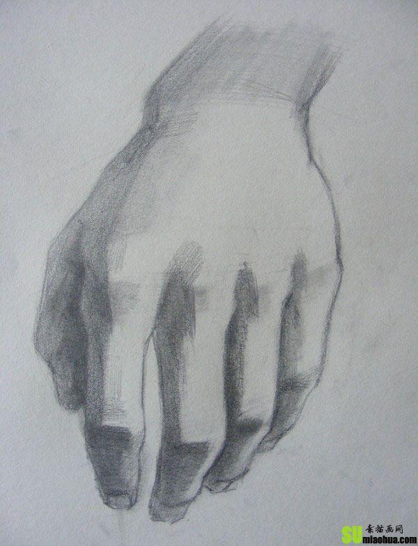 素描写生怎样画手部的绘画步骤过程教程图片