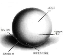 新手素描石膏圆的明暗处理方法