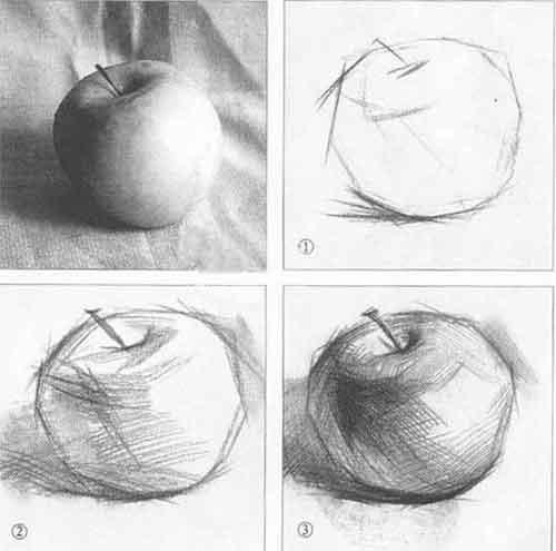 素描苹果画