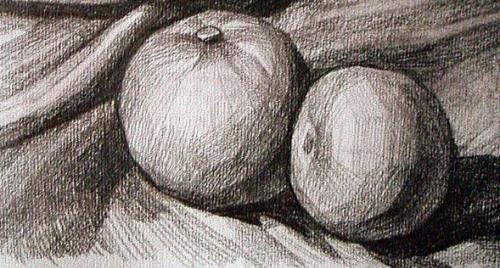 橘子的起形方法