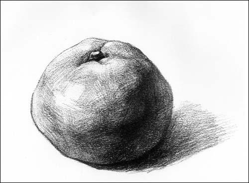 新手素描橘子的明暗处理方法