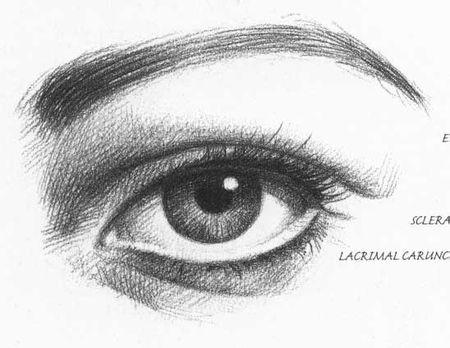 新手素描眼睛的明暗处理方法