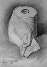 素描卫生卷纸