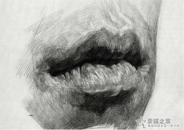 素描五官嘴巴