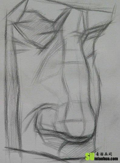 鼻子的形状看相图解