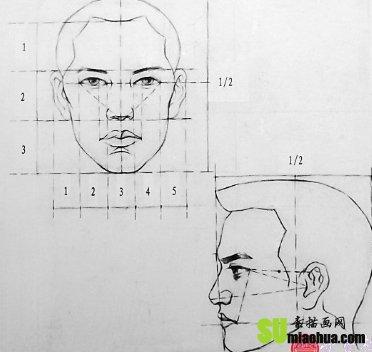 素描人物头部结构与特征